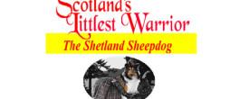 Scotland's Littlest Warrior